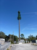 Image for CREPA Pine Tree Tower - Jacksonville, FL