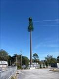 Image for CREPA Pine Tree Tower - Jacksonville, FL