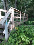 Image for North Country Trail Footbridge - Cedar Springs, Michigan