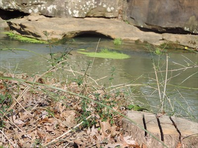 The pool above the falls