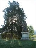 Image for SYCAMORE SHOALS MONUMENT - Elizabethton, TN
