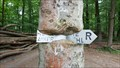 Image for Baum frisst Hinweisschild - Knopshof - Andernach-Kell, RP, Germany