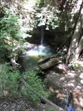 Image for Sempervirens Falls - Big Basin Park - Santa Cruz County, California