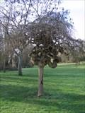 Image for Parc Les Brizeaux - Niort, FR