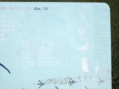Some other migratory birds are mentioned on the top right of this sign: Cattle Egret, Royal Spoonbill, Latham