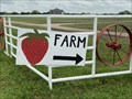 Image for Pecan Creek Strawberry Farm