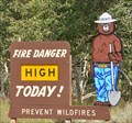 Image for Fishlake National Forest Smokey