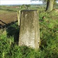 Image for O.S. Triangulation Pillar - Kemphill, Coupar Angus, Perth & Kinross.