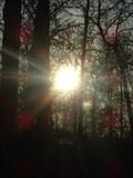 Image for Joplin Spook Lights
