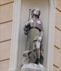 Image for Saint Roch et son chien - Italie et Cardinale, Aix en Provence, Bouches-du-Rhône, France