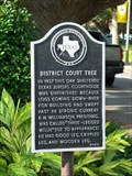 Image for District Court Tree