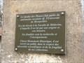 Image for Le jardin des plantes de Montpellier - France
