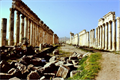 Image for LONGEST - Colonnade in the Roman World