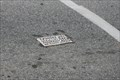 Image for Toynbee Tile; King of Prussia, PA