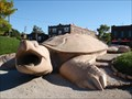 Image for Turtle Playground in Forest Park - St. Louis, MO