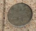 Image for Nine Pointed Star Medallion -- Calhoun County Courthouse grounds, Hampton AR