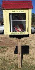 Image for Literacy House Little Free Library - Arlington, TX