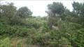 Image for The coastal botanic garden of the region veneto, Po delta, Italy