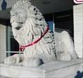 Image for Large Lion - Salem, IN