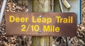 Image for Roaring River State Park Deer Leap Trail – Cassville, Missouri