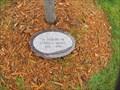 Image for Eldon E. Skeate Tree - Minnesota State Veterans Cemetery - Little Falls, Minnesota