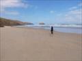 Image for Allans Beach - Otago Peninsula, Otago, New Zealand