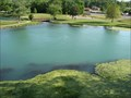 Image for Mammoth Spring National Natural Landmark - Arkansas