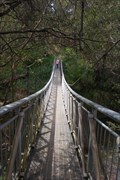 Image for Canyon Walk west bridge - Bright, Vic, Australia