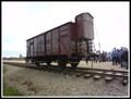 Image for Freight car - Oswiecim, Poland