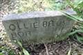 Image for Ollie Baust -- Eanes Cemetery, Austin TX