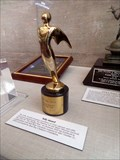 Image for Telly Award  -  National Air & Space Museum  -  Washington, D.C.