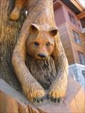 Image for Mountain Lion  Totem Pole - South Lake Tahoe, CA