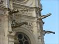 Image for Église Sainte Pierre (St. Peter's Church) Gargoyles - Caen, France