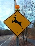 Image for Deer Crossing West - Ferrysburg, Michigan