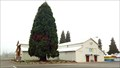Image for Giant Sequoia - Josephine County Fairgrounds - Grants Pass, OR