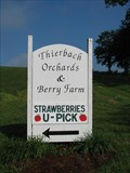 Image for Thierbach Orchards & Berry Farm