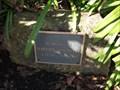 Image for Marjorie Ann Henry - Rohnert Park, CA