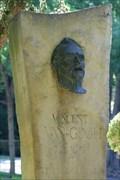 Image for Vincent Van Gogh - Arles, Franvce