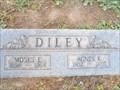 Image for 103 - Agnes K. Diley - Evergreen Cemetery - Tucson, AZ