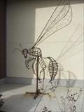 Image for Bee - Sacramento, CA