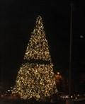 Image for Valley Fair Mall Tree -  Santa Clara, CA
