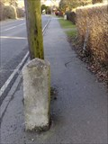 Image for A3095 Forest Road milestone, Newell Green, Berks