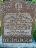 Image for 101 - Tabitha S Ringrose Cole - Beechwood, Ottawa, Ontario