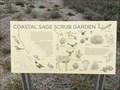 Image for Costal Sage Scrub Garden - Newport Beach, CA