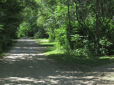 Part of loop in wooded state park drive-in campground
