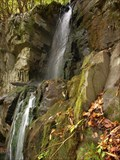 Image for Baskins Creek Falls