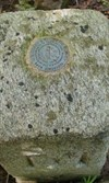 Reference Mark disk set into the top of the stone in 1936