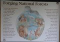 Image for Forging National Forests