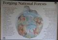Image for Forging National Forests