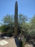 Image for Not your normal saguaro